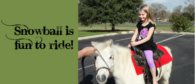 Snowball is fun to ride!